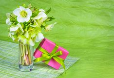 Bouquet of spring flowers and box with gift on green background. Bouquet of hellebells. International Women`s Day. Romantic concept Royalty Free Stock Photography