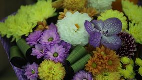 Bouquet of spring flowers stock video footage