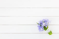 Bouquet of spring flowers decorated with lace on white wooden background, copy space. Chionodoxa flowers. Stock Images