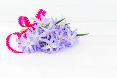 Bouquet of spring flowers decorated with ribbon on white wooden background. Copy space Royalty Free Stock Images