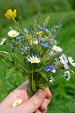 Bouquet of spring flowers in her hand. selective focus. Bouquet of spring flowers in her hand Royalty Free Stock Images