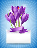 Bouquet of spring flowers with a note Stock Image
