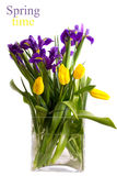 Bouquet of spring flowers - tulips and irises Stock Photography