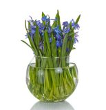 Bouquet of spring flowers in vase Stock Photography