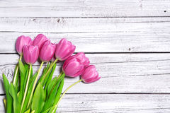 Bouquet of spring pink tulips Royalty Free Stock Images
