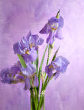 Bouquet of spring purple Irises. Behind   embossed  glass. Still life.  It is photographed through glass. focus on near flower Royalty Free Stock Photography
