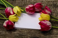 Bouquet of tulip flowers and blank notepad on rustic wooden background Royalty Free Stock Photo
