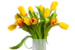 Bouquet of spring tulips Royalty Free Stock Photos