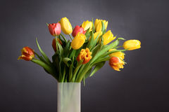 Bouquet of spring tulips Royalty Free Stock Images