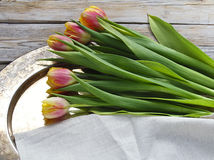 Bouquet of spring tulips. On a copper tray on  wooden table Stock Images