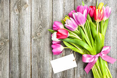 Bouquet of spring tulips with empty tag Stock Photos