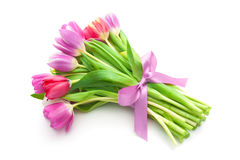 Bouquet of spring tulips flowers Stock Images