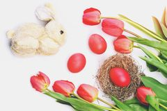 Bouquet of spring tulips for holiday. Easter symbols concept. Happy easter egg. holiday bunny and eggs, spring flower backround Bouquet of spring tulips for Stock Images
