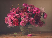 Bouquet. Still life with asters and chrysanthemums Stock Photography
