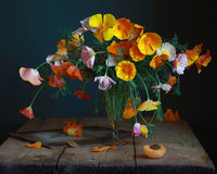 Bouquet. Still life with flowers and apricot Stock Photos