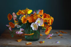 Bouquet. Still life with bouquet in a glass jar Stock Image