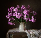 Bouquet. Still life with summer flowers of Phlox Royalty Free Stock Photo