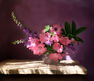 Bouquet. Still life with a summer bouquet on a violet background Stock Image