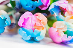 Bouquet  of strange multicolored tulips Stock Image