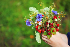 Bouquet of strawberries Royalty Free Stock Image