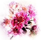 Bouquet of stylized violet chrysanthemums in pastel colors Royalty Free Stock Photo