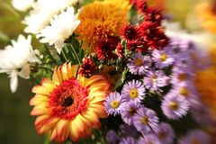 Bouquet of summer garden flowers stock photo