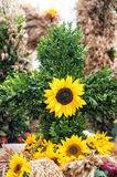 Bouquet with sun flowers Royalty Free Stock Photos