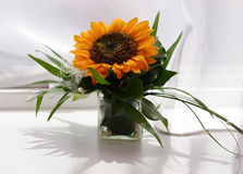 Bouquet of sunflower Stock Photo