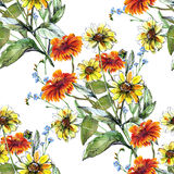 Bouquet sunflower with chamomile and blue flower color pencil Royalty Free Stock Images