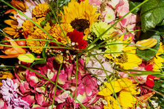 Bouquet of sunflowers, alstromeria, gerbera, chrysanthemum and l Stock Photo