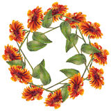 Bouquet sunflowers border pattern Stock Photography