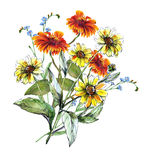Bouquet sunflowers with chamomile and blue flower pattern Royalty Free Stock Image