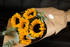 Bouquet of sunflowers on dark background. Deluxe bouquet of sunflowers on dark background Royalty Free Stock Photography