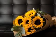 Bouquet of sunflowers on dark background. Deluxe bouquet of sunflowers on dark background Stock Photo