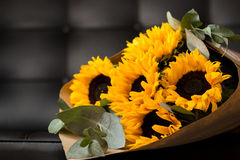 Bouquet of sunflowers on dark background. Deluxe bouquet of sunflowers on dark background Royalty Free Stock Images