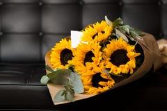 Bouquet of sunflowers on dark background. Deluxe bouquet of sunflowers on dark background Stock Photography