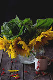 Bouquet of sunflowers Stock Photo