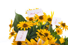 Bouquet of sunflowers and gratitude Stock Images