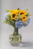 Bouquet of sunflowers, hydrangeas and field daisies Stock Image