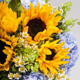 Bouquet of sunflowers, hydrangeas and field daisies Stock Photo
