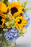 Bouquet of sunflowers, hydrangeas and field daisies Stock Photos