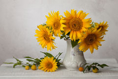 Bouquet  of sunflowers. In old ceramic jug   against a white wooden wall Royalty Free Stock Photos