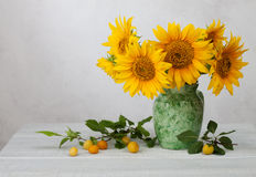 Bouquet of sunflowers Stock Images