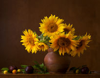 Bouquet of sunflowers. Royalty Free Stock Photo