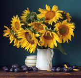 Bouquet of sunflowers and plums stock photo