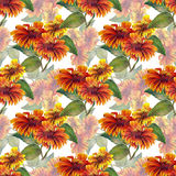 Bouquet sunflowers seamless pattern Royalty Free Stock Photography