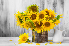 Bouquet sunflowers Still life old tin Stock Photography