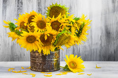 Bouquet sunflowers Still life old tin Royalty Free Stock Photo