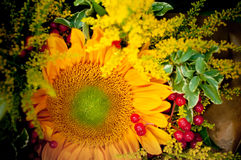 Bouquet of sunflowers. Royalty Free Stock Image