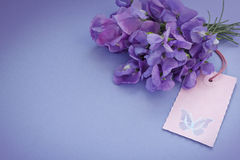 Bouquet sweet peas tag butterfly Royalty Free Stock Photography
